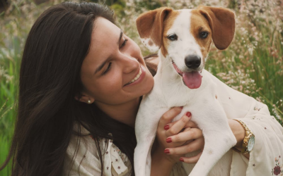 Happy and Healthy Animals – A Guide to More Adoptions